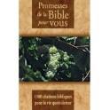 Promesses De La Bible Pour Vous